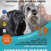 schanuzer pincher special show